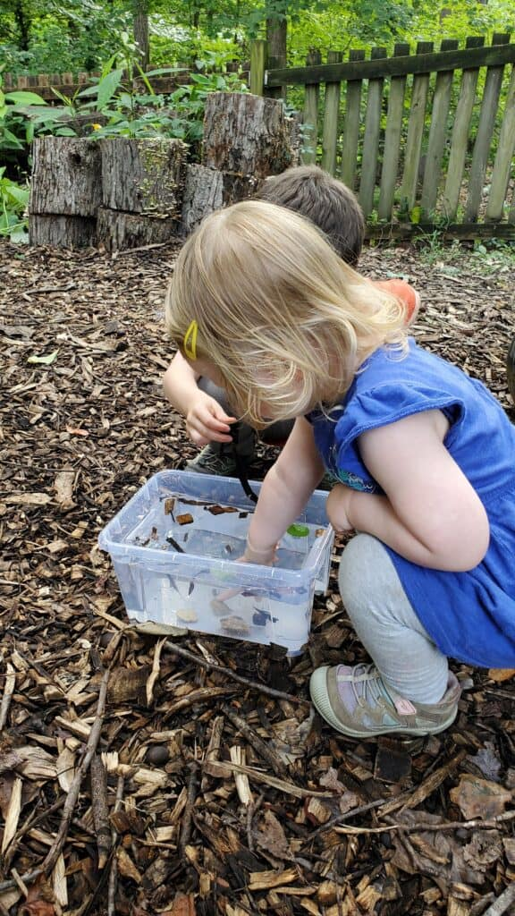 Nature Preschool classic activity- sink or float! We love to play with natural materials in our homeschool.